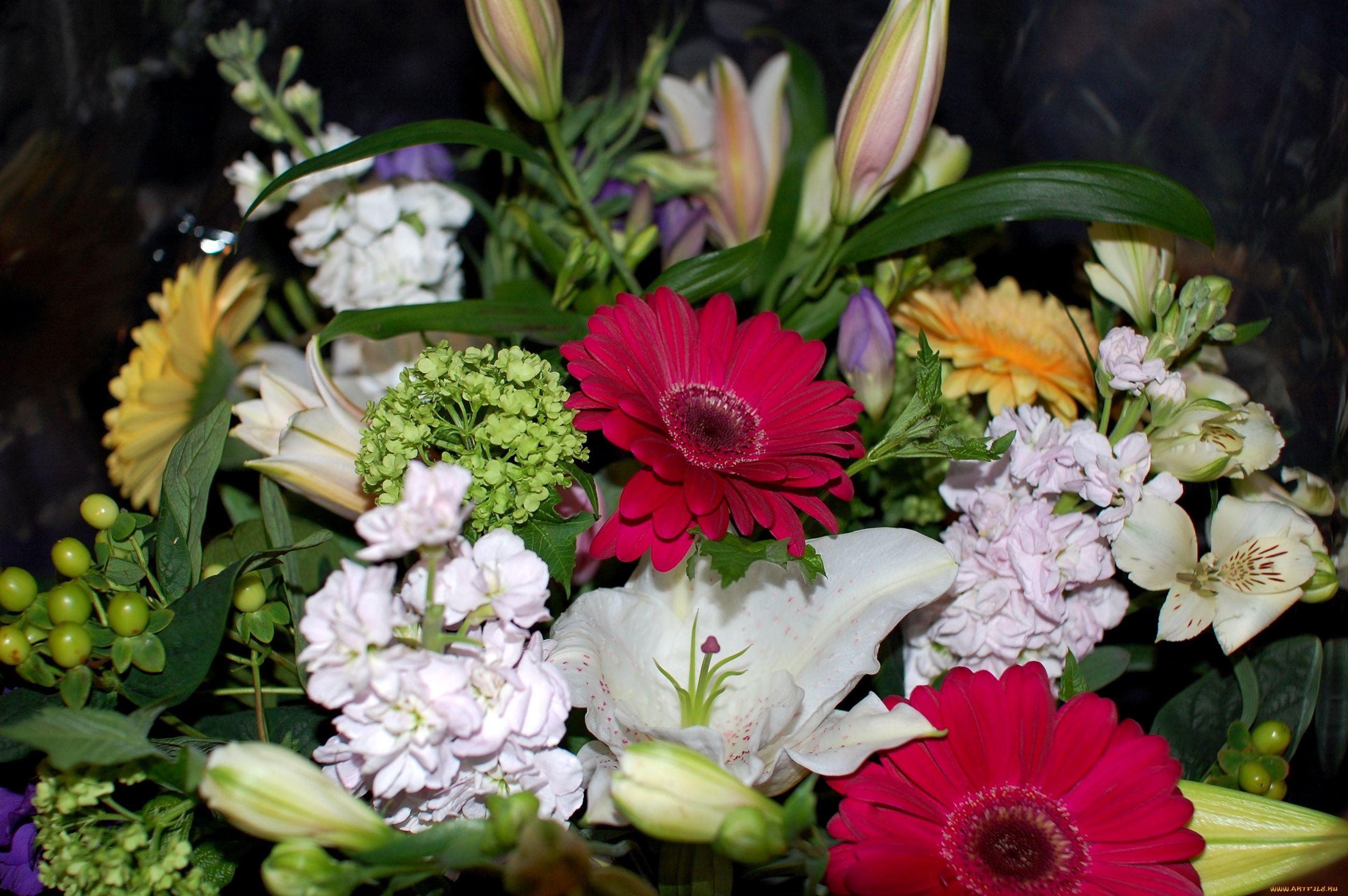 можете фото цветов на столе настоящие дать отпор хулиганам